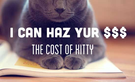 What's a Cat Cost?