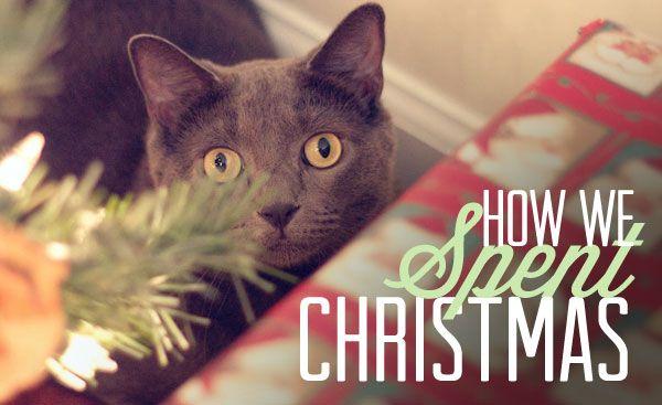 How we spent Christmas