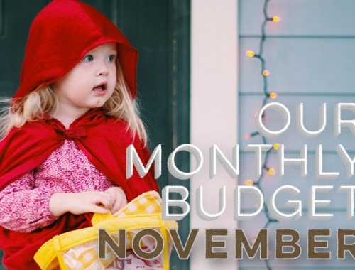 Our Monthly Budget: November